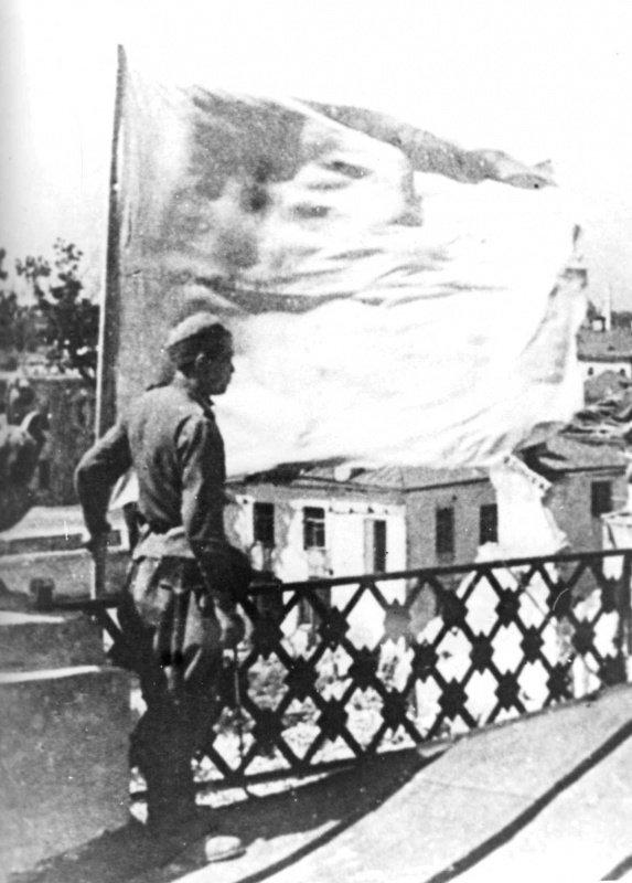 Пятый сталинский удар. Часть 3. Могилёвская наступательная операция