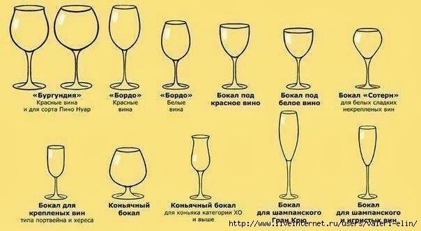 Узнайте какой бокал для чего предназначен: