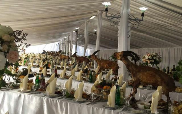 На кавказской свадьбе съели краснокнижных туров