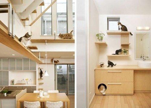 Полки для кошек