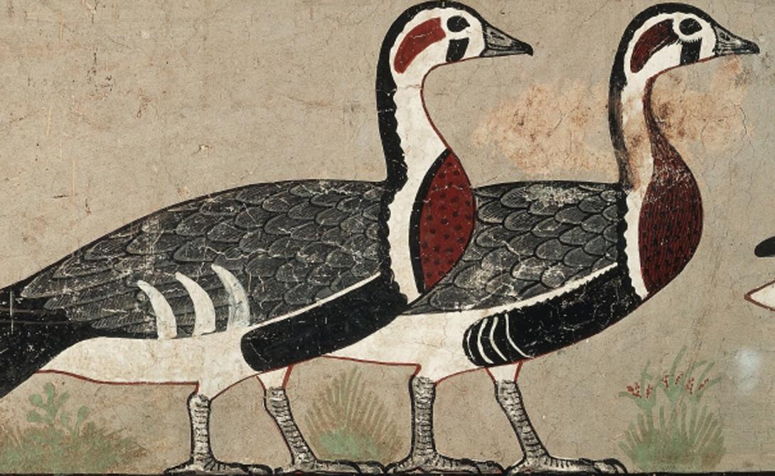 Бес Бог по имени Бес считался одним из самых занятых в Древнем Египте. Он охранял младенцев и матерей, спасал от ночных кошмаров и мешал скорпионам кусать добрых людей.