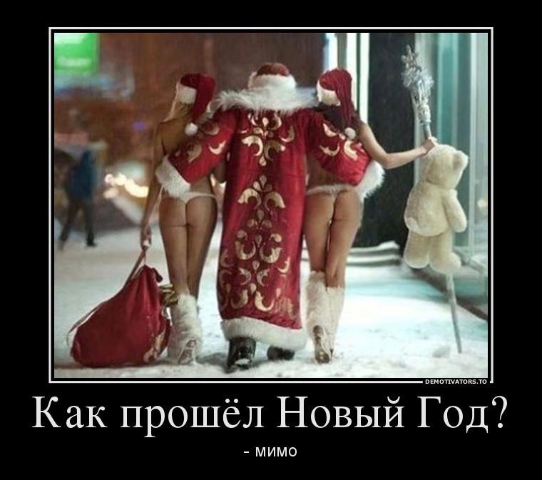 Демотиваторы НовоГодние (39 фото)