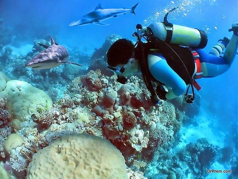 8 самых стоящих мест для любителей подводного плавания