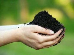 Способы перекопки почвы