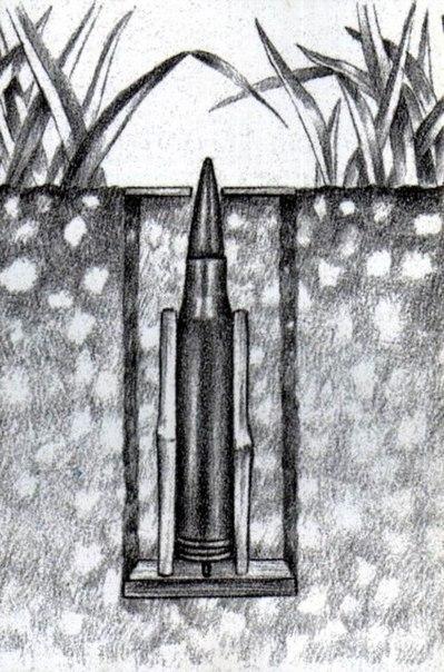 Ловушка вьетнамских партизан в борьбе с пехотными подразделениями войск США