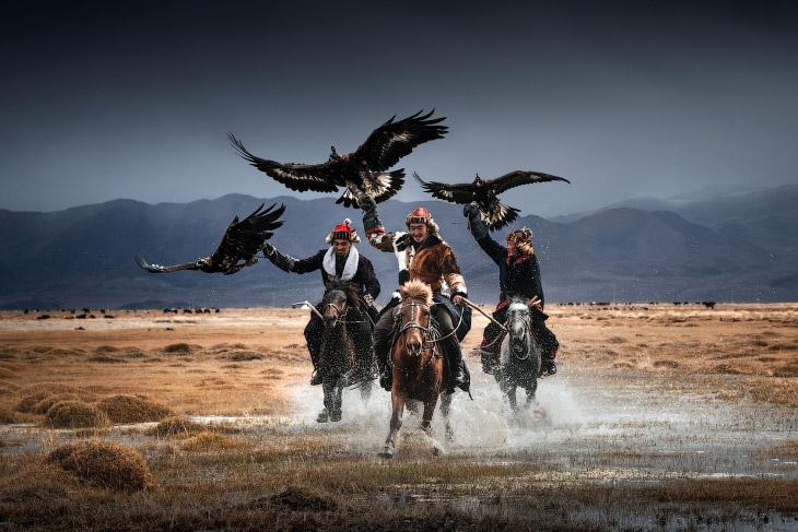Охота с беркутом в Монголии