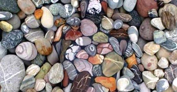 Может показаться, что это куча разноцветных камней. Но, узнав правду, я был поражен...