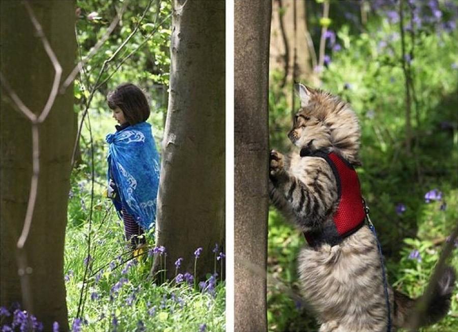 IrisandThula12 Как кошка Тула помогает девочке с аутизмом