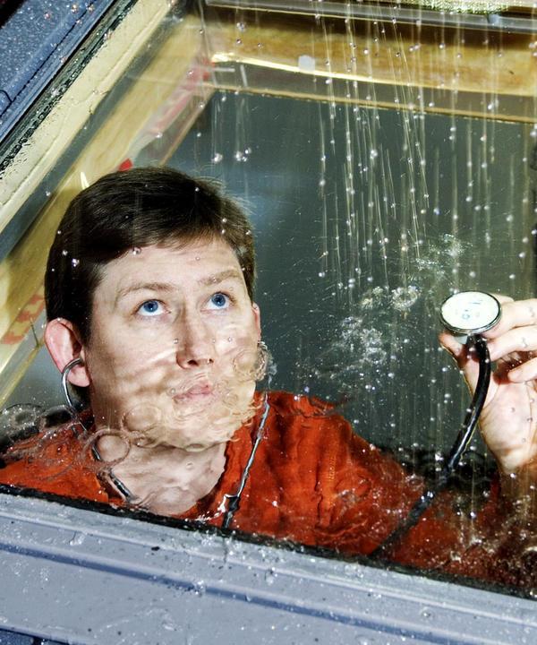 Хороший стеклопакет заметно повышает звукоизоляцию всего дома. Фото: Velux