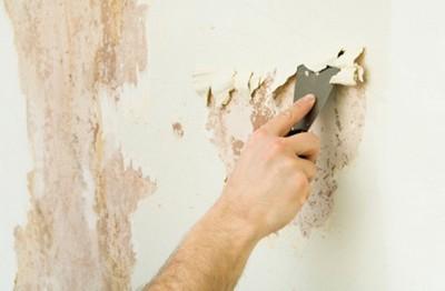 Подготовка стен к покраске порядок работ особенности и