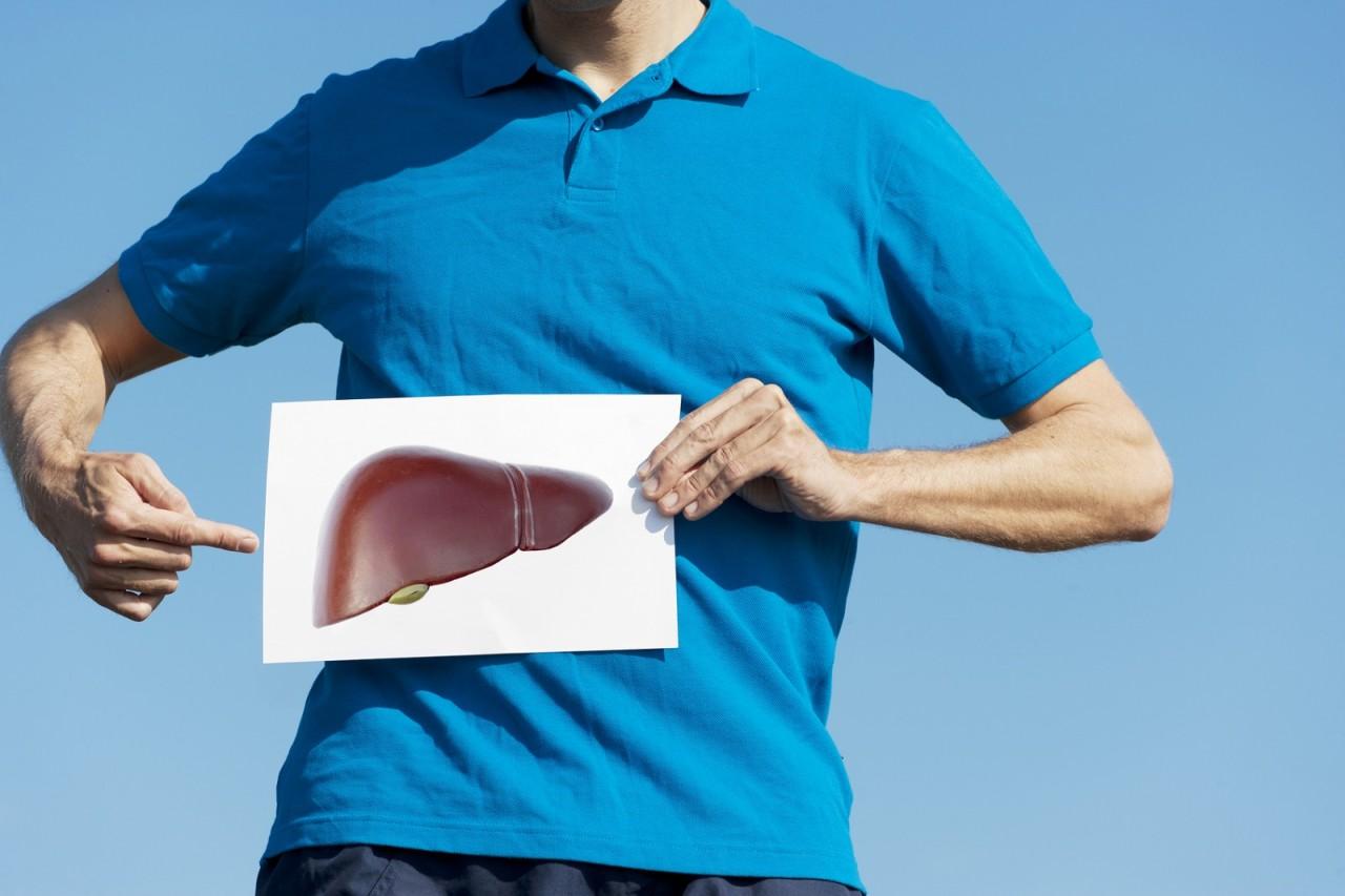 Лечебные сборы при заболеваниях печени