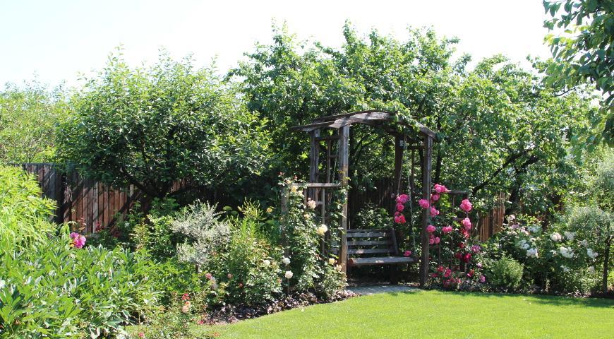 сад Локшиной, дизайн сада, ландшафтный дизайн, садовая мебель, отдых в саду, зона отдыха, газон