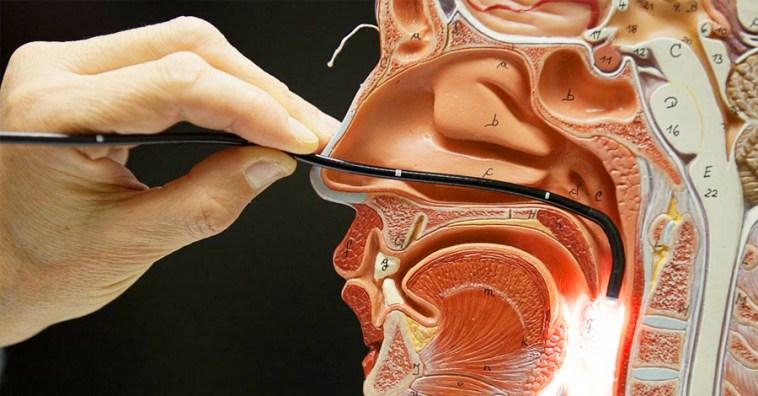Вирус Эпштейна-Барр: симптоматика и лечение
