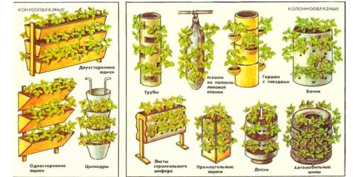 Вертикальный способ выращивания клубники 35
