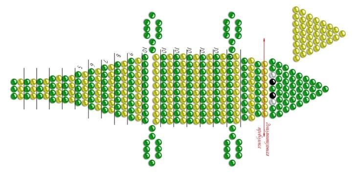 Выкройка крокодила для коврика