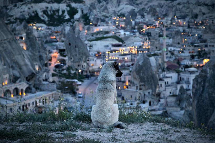 Великолепные тревел-фотографии Ника Даума, вызывающие восхищение