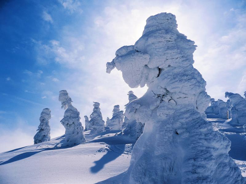 Снежные монстры в Японии