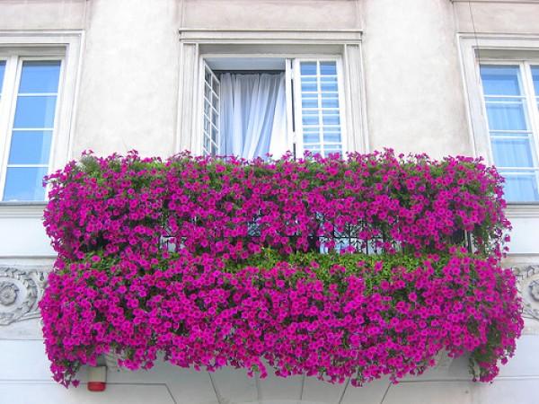 балконы, террасы, лоджии фото - 06