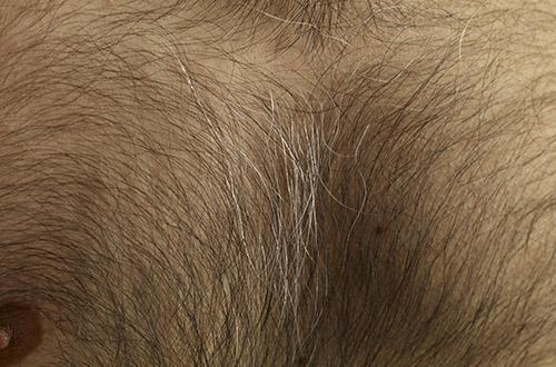 Густые волосы на лобке у женщин фото фото 513-273