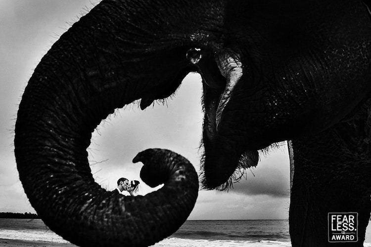 Fearless Photographers: лучшие свадебные фотографии со всего мира, собранные в одном месте