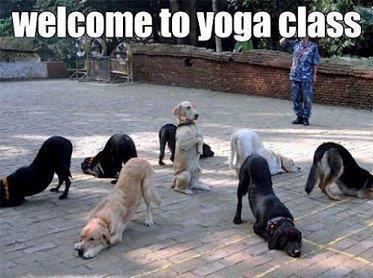 Время для йоги