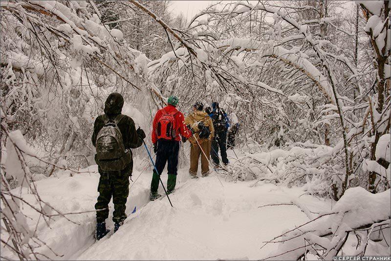 О красоте природной. Гжель - Искусство Русской зимы
