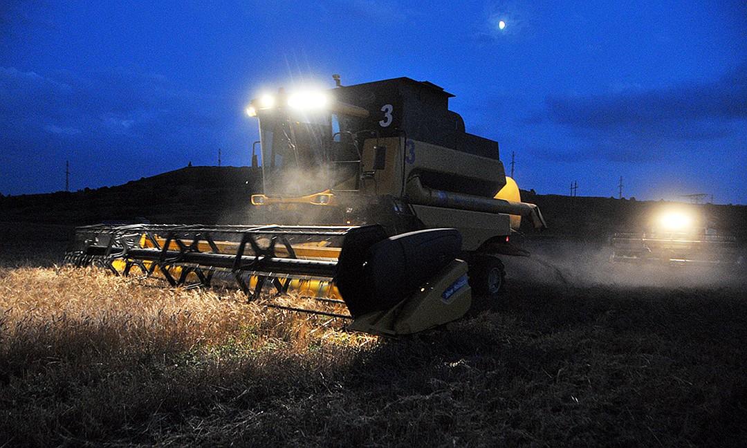 Производство зерна на богатых почвах позволяет не тратиться на удобрения Фото: Игорь ЧАБАНЕНКО