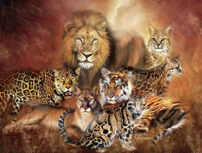 Шикарные работы Кэрол Каваларис. Мир животных