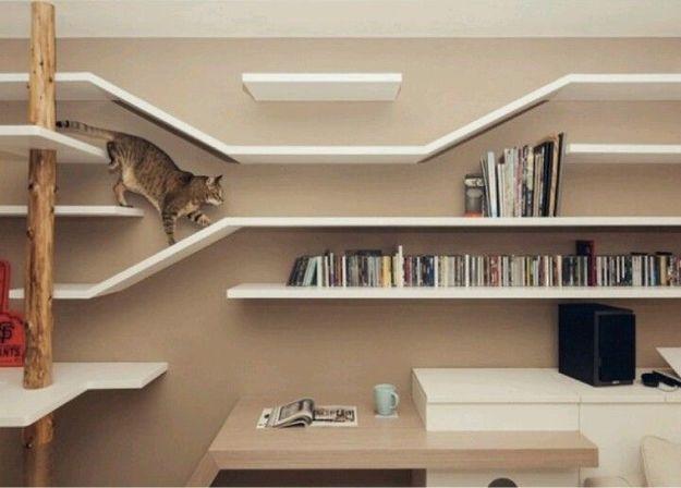 Лабиринт для кошки из настенных полок