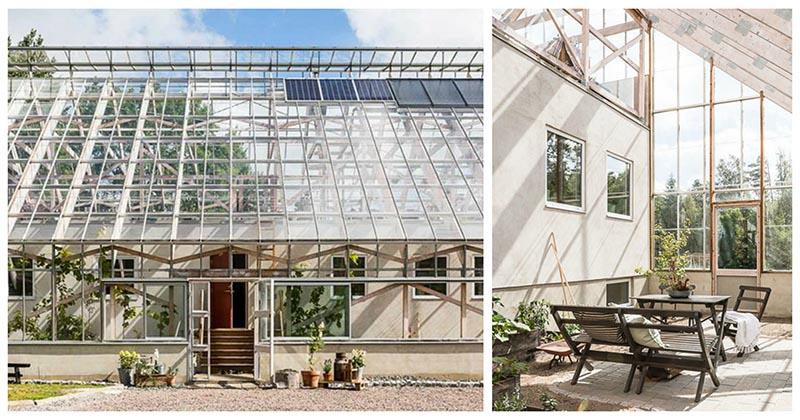 Уникальный дом внутри оранжереи — постройка, которая поражает своей гениальностью