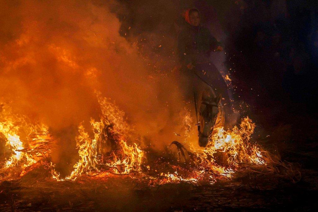 Luminarias - испанский фестиваль огня и животных-12