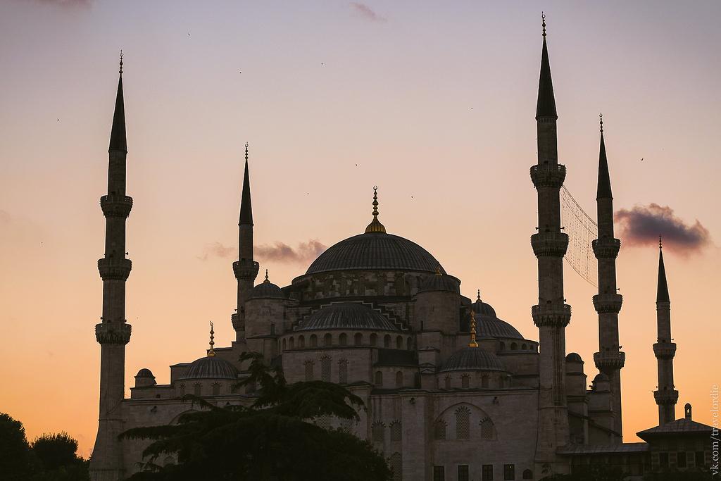 Типичный Стамбул. Часть 1. Район Султанахмет, круиз по Босфору и чайки-трупоеды
