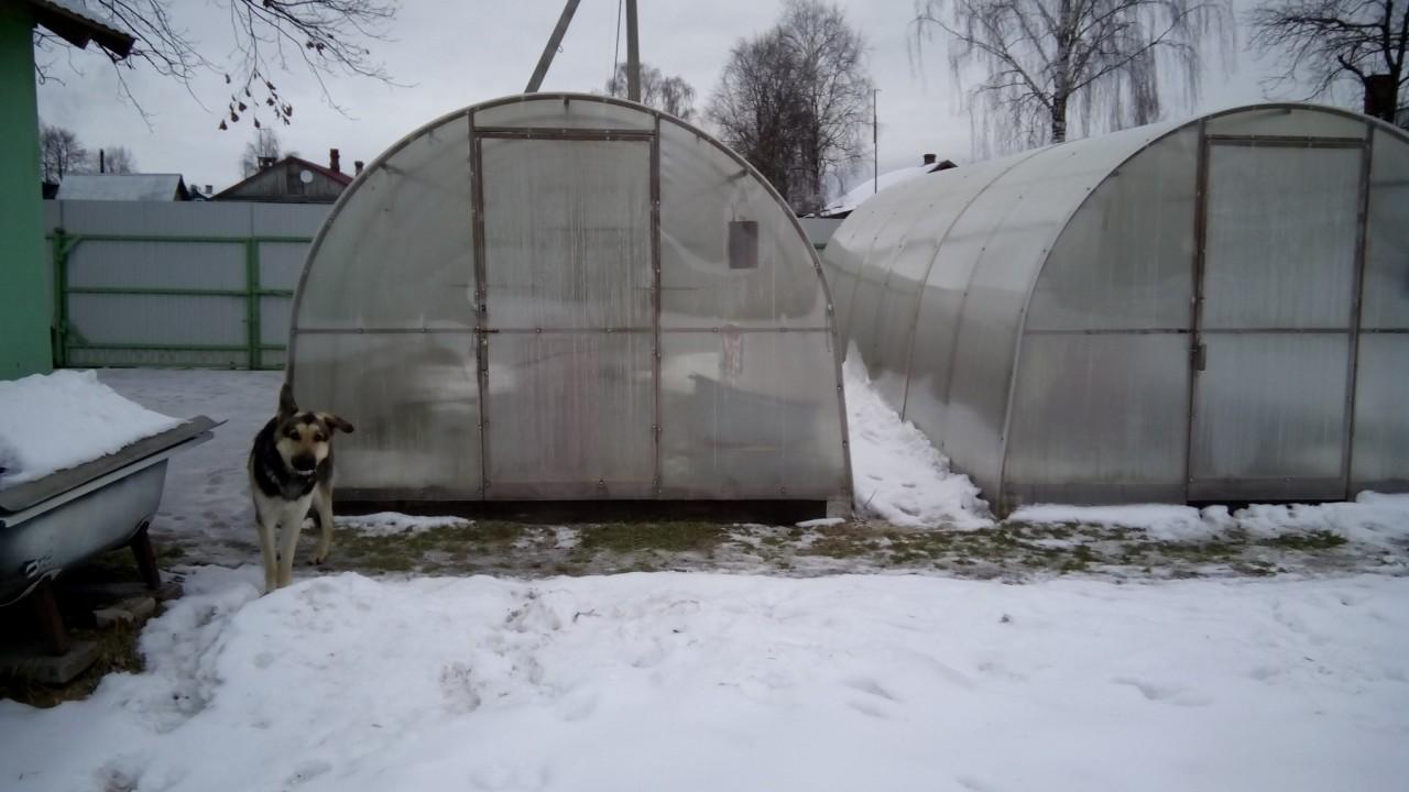 Защищаем теплицу от снеговых нагрузок
