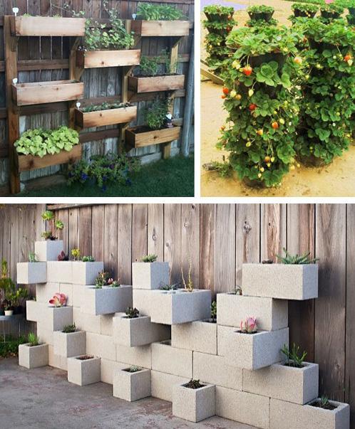 вертикальное выращивание растений