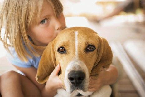 Контакт с домашними животными укрепляет иммунитет ребенка.