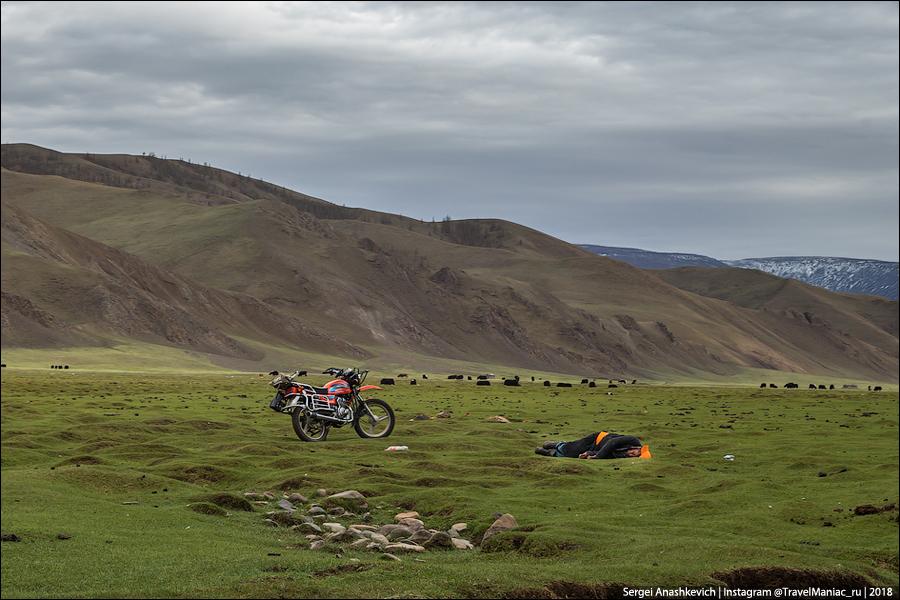 Монголы и алкоголь