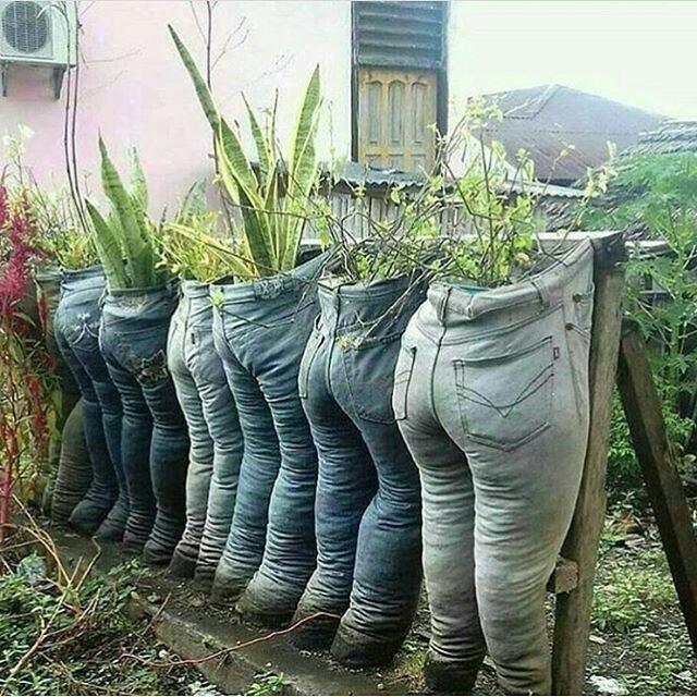 Во саду ли в огороде...