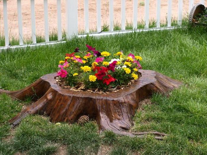 Полезный лайфхак для садоводов и дачников: натуральная клумба в пеньке