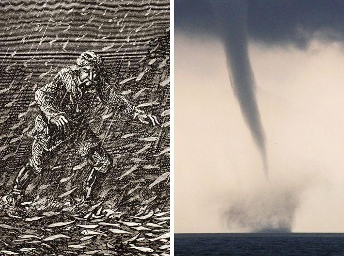 9 аномальных явлений, доказывающих, что природа даст фору любому фантасту
