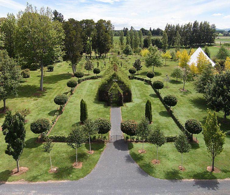 церковь из деревьев, Брайан Кокс, Brian Cox, вырастил церковь за 4 года