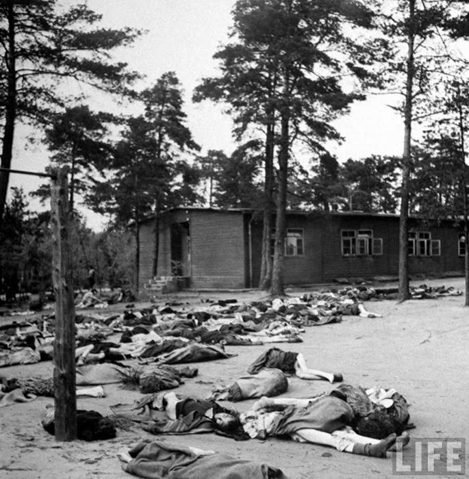 20 шокирующих фотографий из концлагеря Берген-Бельзен сразу после его освобождения