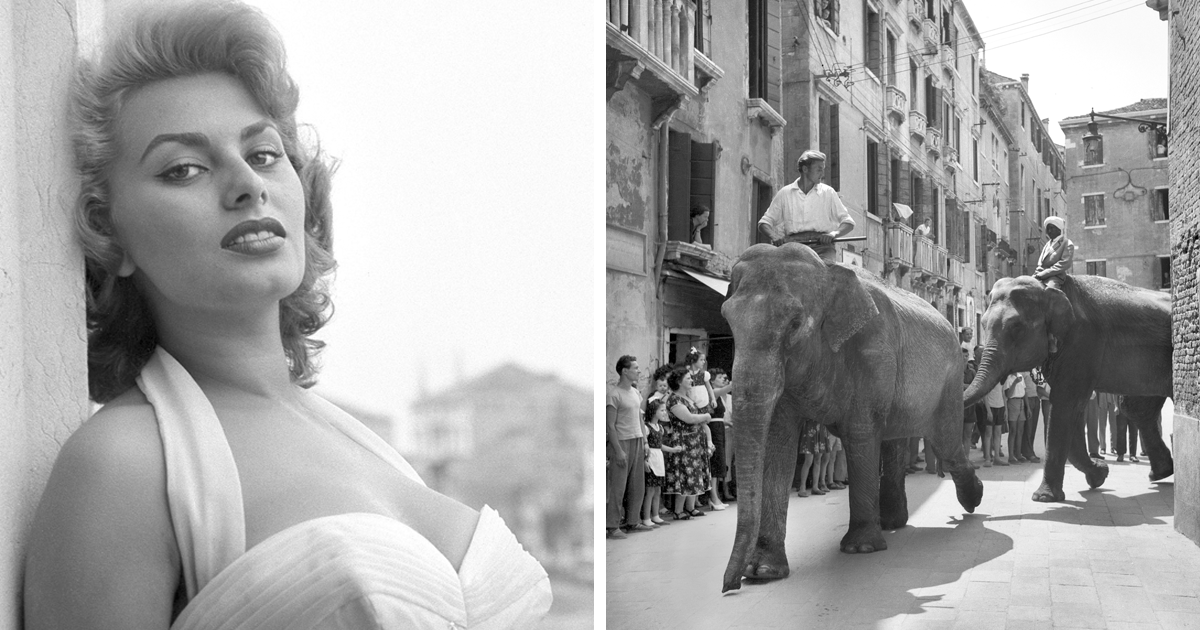 26 Rare Photos Of Celebrities Hanging Out In Venice In The 50s And 60s