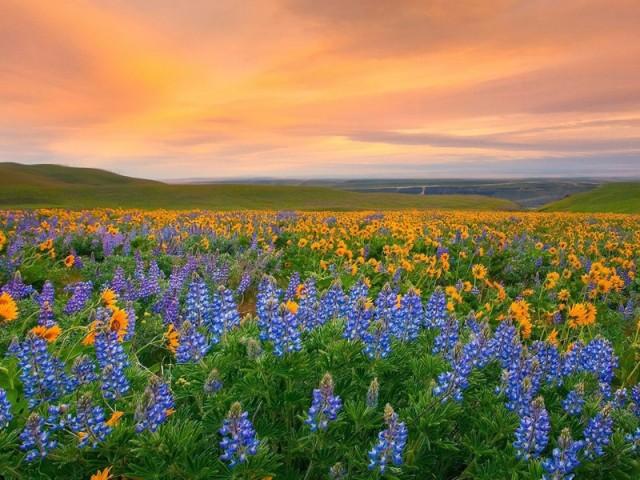 15 самых красочных мест на планете