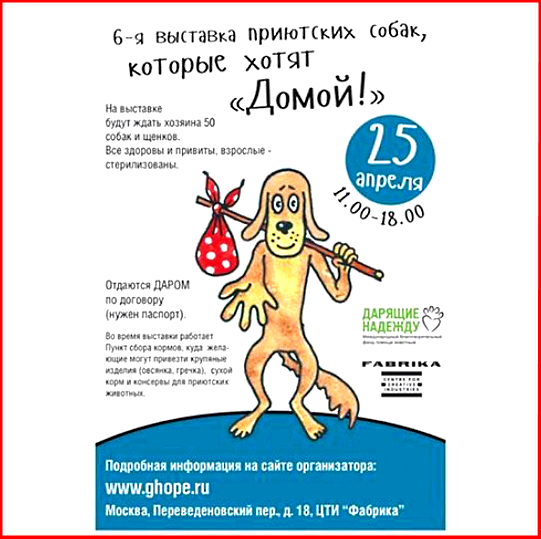 25 апреля выставка бездомных собак в Москве!