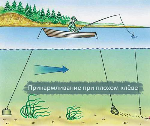 как правильно нужно ловить рыбу видео
