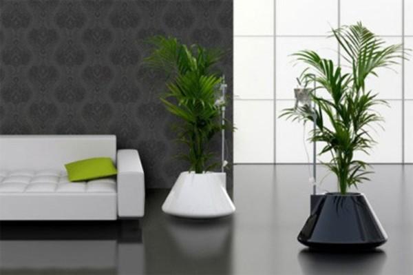 интересное оформление интерьера растениями акценты