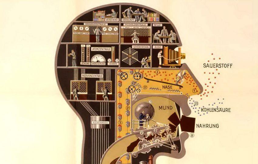 10 необычных защитных механизмов нашего тела организм, человек, рефлекс