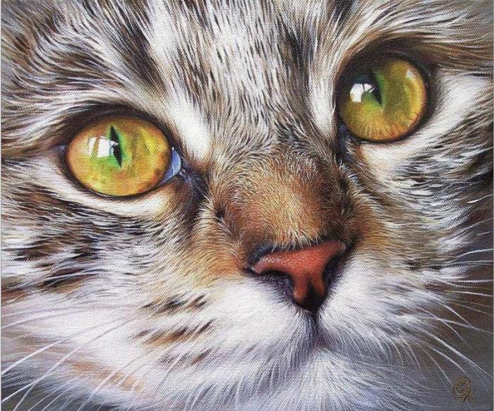 Про кошачьи глаза, художница Елена Колотуша