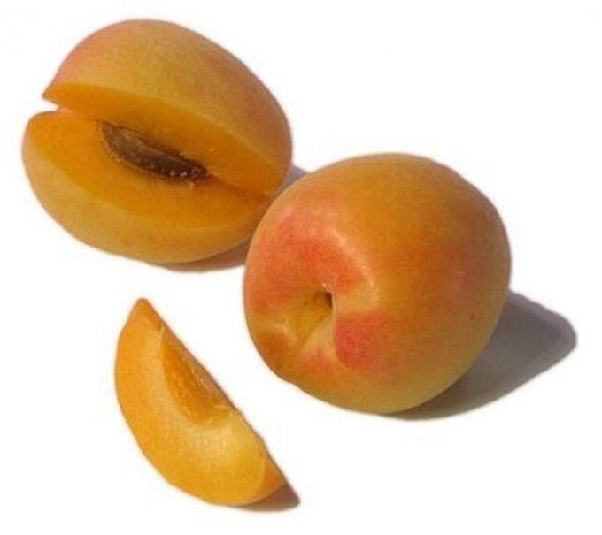 9. Априум гибрид, еда, фрукты