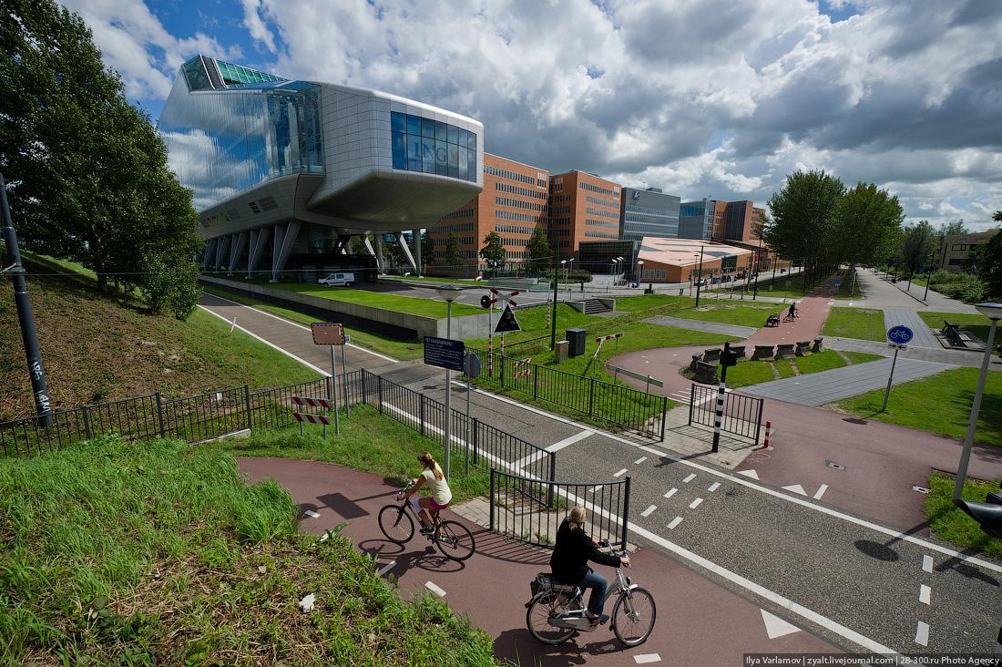 Велосипедисты и Амстердам